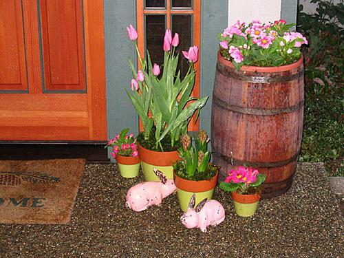 Entry Potted Flowers